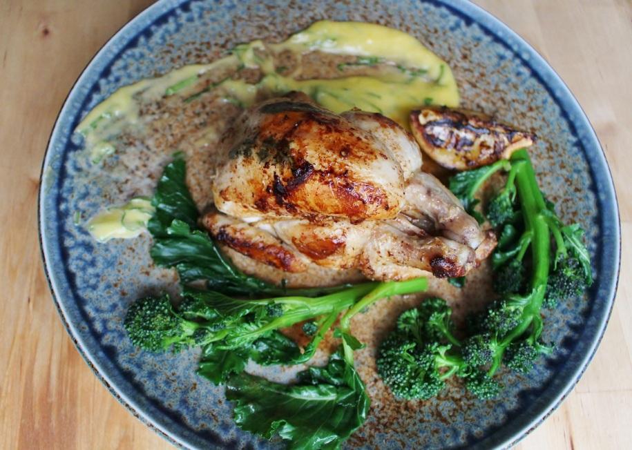 Spring Chicken (1)